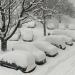 Temporal de nieve afecta a miles de personas en EU