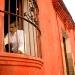 Reconoce Ayuntamiento de Oaxaca a Francisco Toledo como hijo predilecto de Juchitán