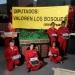 Organización ambientalista pide a diputados reasignar recursos para proteger los bosques
