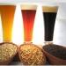 Priístas impulsan producción de cerveza artesanal reduciendo impuestos