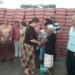 Mil toneladas de cemento ha entregado Mercedes Rojas en Miahuatlán