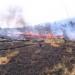 Continúan incendios en Durango