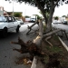 Turbonada  deja sin electricidad a Mérida