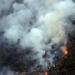 Mueren dos oaxaqueños en incendio forestal