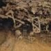 Descubren pinturas rupestres de etnia extinta en Chihuahua