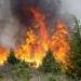 Incendios forestales...97% causados por actividad humana