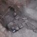 Colima...hallan panteón prehispánico