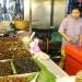 México...gastronomía, vida, tendencias y tradición