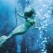 Weeki Wachee Spring...atracción subacuática