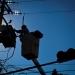 Industriales...piden reducir tarifas eléctricas son más altas que en EE UU