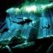 Riviera Maya...sol, olas verde esmeralda, arrecifes y cenotes sagrados