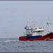 Oaxaca...reportan cuatro pescadores desaparecidos