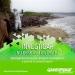 Greenpeace...ley de aguas favorece a la industria no a la gente