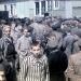 Conmemoran liberación de campos de concentración Nazi