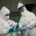 OMS...19 muertes y 162 casos reportados de coronavirus