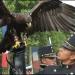 Águilas mexicanas desfilan y causan admiración en Francia