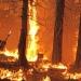California...declaran estado de emergencia por 18 incendios
