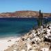 Mar de Cortés... los maravillosos secretos del Golfo de California