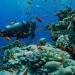 Campeche...Coloquio internacional sobre cultura marítima de México