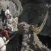 El último puente Inca...patrimonio Cultura Inmaterial de Unesco