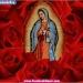 Virgen de Guadalupe...cinco millones llegan a visitarla
