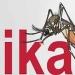OMS...Zika, microcefalia y síndrome de Guillain Barré relacionados