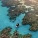ONU...discute conservación de diversidad biológica marina