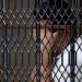Chiapas...detienen a responsable de la muerte de dos menores