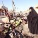 ONU..en abril murieron 741 iraquíes por el terrorismo