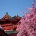 Japón...mezcla de modernidad extrema y pasado imperial