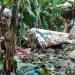 Sedena...confirmó muerte de tres militares al caer helicóptero