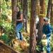Bono de carbono...4 mil hectáreas de bosques de Oaxaca certificadas