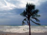 Conagua...se prevén 16 ciclones tropicales más en esta temporada