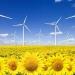 Sandoval...aspiramos al cien por ciento de energías renovables