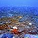 Archipiélago hawaiano...arrecifes coralinos mesofóticos más extensos