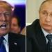 Putin y Trump...tuvimos contactos durante la campaña electoral