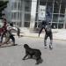 Normalistas vandalizaron e incendiaron oficinas alternas del IEEPO