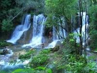 Peña...instruye acciones para preservar selva Lacandona