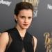 Emma Watson fue víctima de un robo de fotografías íntimas