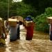 FAO..fortalecerán estrategias de resiliencia al cambio climático