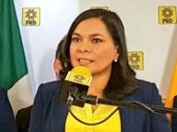 Mojica..decisión de Morena de no ir en alianza es una ruta al fracaso