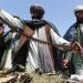Afganistán: Con el mazo dando y a Dios rogando