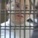 Elba, su liberación y la justicia en tiempos políticos