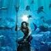 Aquaman..la comparan con Star Wars. Palabras mayores..bajo el agua