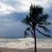AMLO viajará a Nayarit..llevará ayuda a afectados por el huracán Willa.