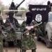 Nigeria, Boko Haram ¿cuál es el plan?