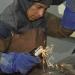 Canadá busca emplear a personas mexicanas en 12 rubros laborales