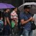 Dos ondas tropicales ocasionarán lluvias muy fuertes en siete entidades