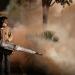 Concentran cinco estados 79 por ciento de casos de dengue en el país